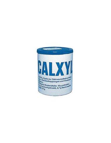CALXYL PASTA 20g